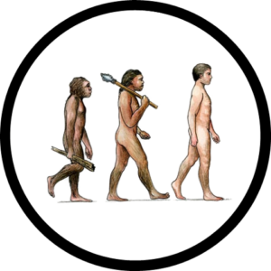 Human_Evolution_Icon