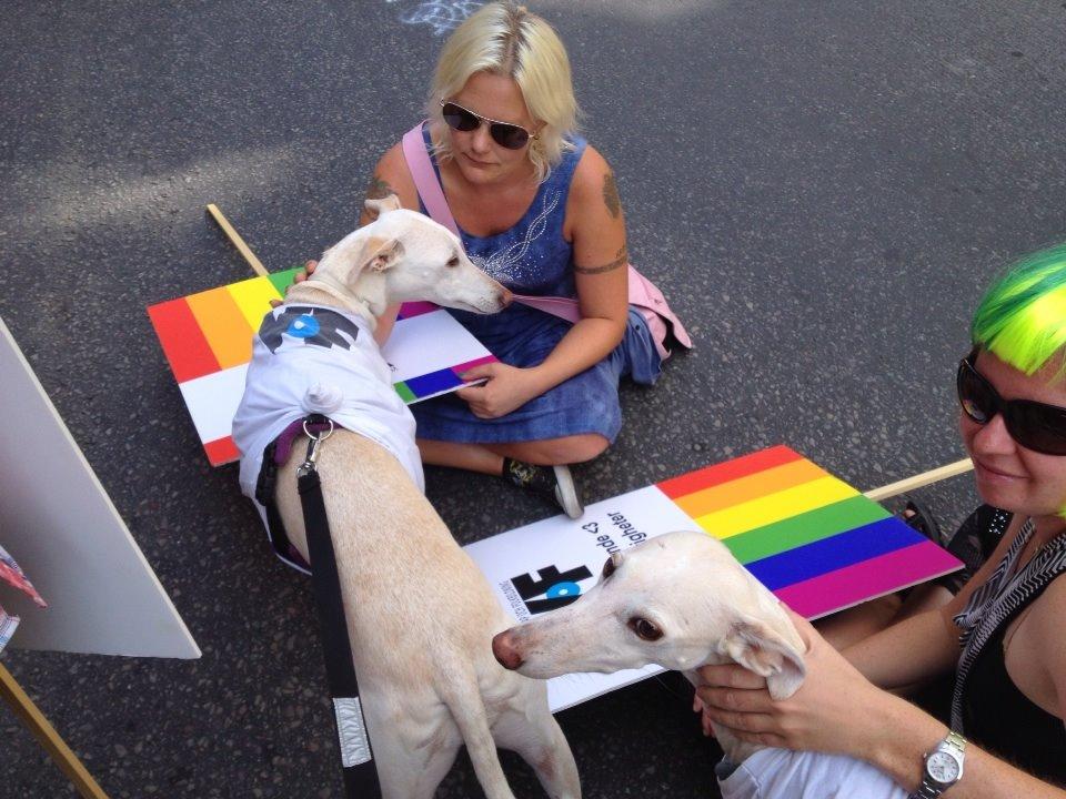 Linda, de skeptiska hundarna Råttan & Pippi samt Christine Öberg på Stockholm Pride 2014