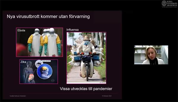Gunilla Karlsson Hedestam - Immunsvar mot virus och antikroppars mångfald